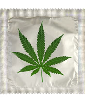 Callvin Cannabis